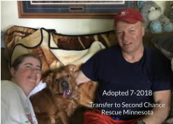 Adopted 7-2018 Transfer to Second Chance Rescue Minnesota