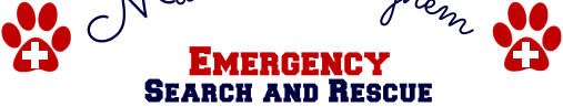 Emergency Search and Rescue